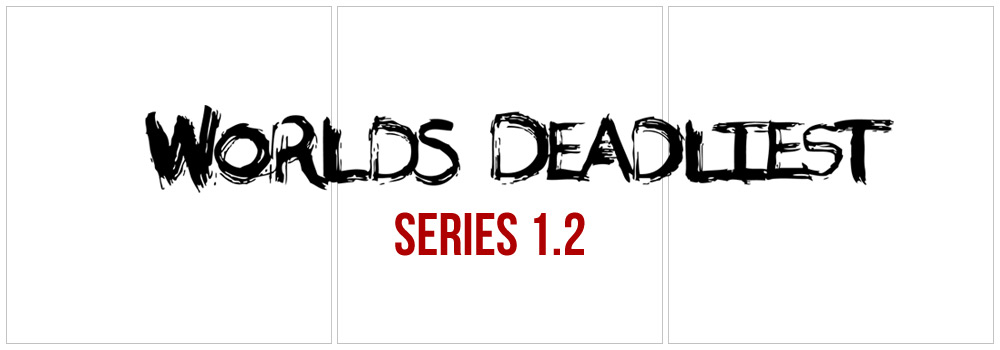 series1.2