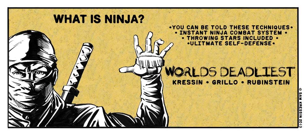 What-Is-Ninja